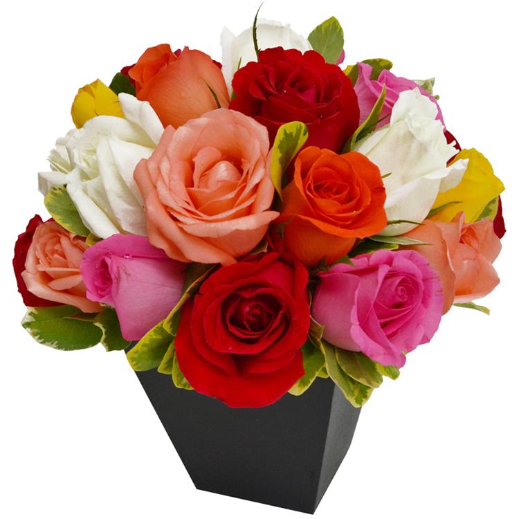 arranjo com 12 rosas coloridas