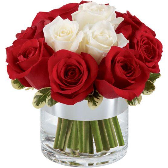 arranjo rosas vermelhas e brancas no vaso