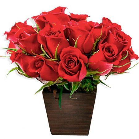 cachepot com 12 rosas vermelhas