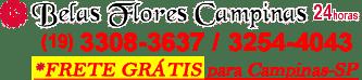 Floricultura Online Belas Flores Campinas 24 horas, Buques, Cestas, Arranjos, Coroas e Arranjos Fúnebres – Campinas e Região