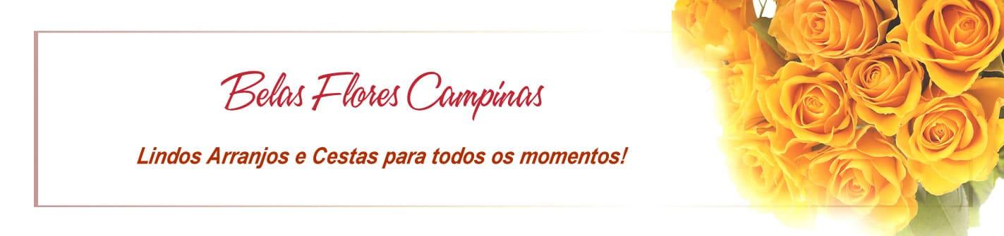 BelasFloresCampinas_4